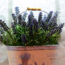 lavender-about